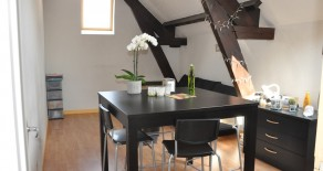 studio 25 m²  loué