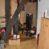 Studio de 22 m² loué